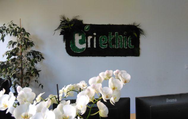triethic plantes